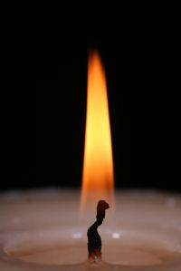 candle flame_opt